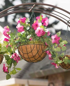 "8"" Hanging Basket with Coco Liner"