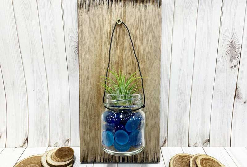 Live Air Plant Wall Plaque